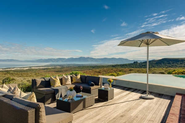 南非,開普敦,Grootbos Private Nature Reserve,納爾遜山酒店, 野生動物, Belmond Mount Nelson Hotel