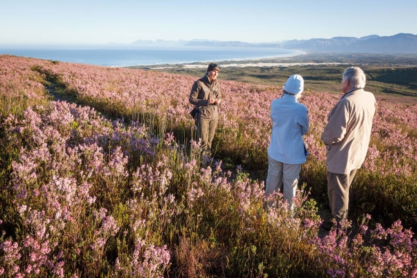 South Africa, Grootbos Private Nature Reserve, Belmond Mount Nelson Hotel, wildlife, Cape Town