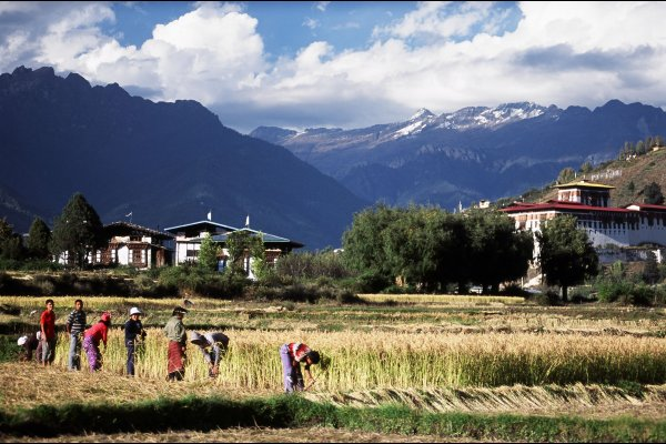 不丹 Uma by COMO, Paro, Bhutan Luxury resort (flight ∙ hotel ∙ package ∙ cruise ∙ private tour ∙ business ∙ M.I.C.E ∙ Luxury travel  ∙ Luxury holiday  ∙ Luxe World  ∙ 特色尊貴包團 ∙  商務旅遊 ∙  自由行套票 ∙滑雪  ∙ 溫泉 ∙ 品味假期 ∙ 品味遊)