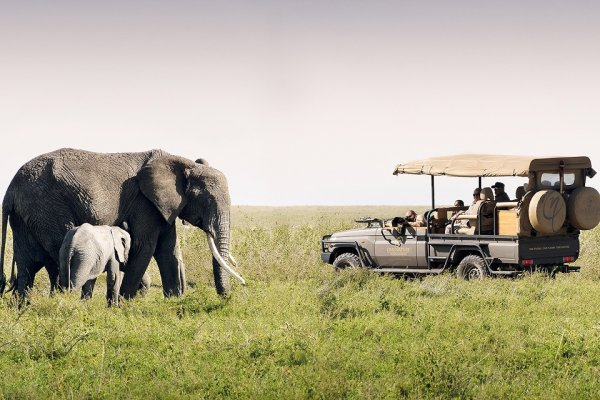 One nature Nyaruswiga Serengiti National Park Tanzania (flight ∙ hotel ∙ package ∙ cruise ∙ private tour ∙ business ∙ M.I.C.E ∙ Luxe Travel ∙ Luxury travel  ∙ Luxury holiday  ∙ Luxe Tour  ∙ 特色尊貴包團 ∙  商務旅遊 ∙  自由行套票 ∙滑雪  ∙ 溫泉 ∙ 品味假期 ∙ 品味遊)