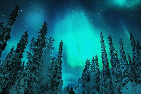 芬Northen Lights Kakslauttaen Arctic Resort Lapland Finland Luxury resort (flight ∙ hotel ∙ package ∙ cruise ∙ private tour ∙ business ∙ M.I.C.E ∙ Luxe Travel ∙ Luxury travel  ∙ Luxury holiday  ∙ Luxe Tour  ∙ 特色尊貴包團 ∙  商務旅遊 ∙  自由行套票 ∙滑雪  ∙ 溫泉 ∙ 品味假期 ∙ 品味遊)