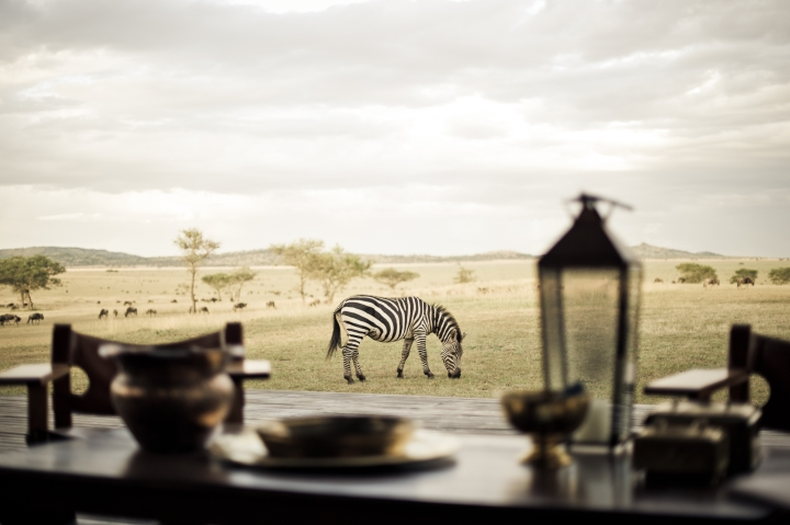 Singita, South Africa,  The great migration