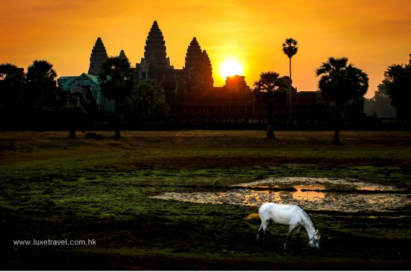 A Run Through the Empire | Angkor Wat International Half Marathon, Cambodia | Luxe Travel