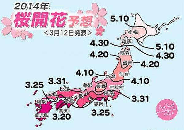 Final schedule of Japan Cherry Blossom in 2014