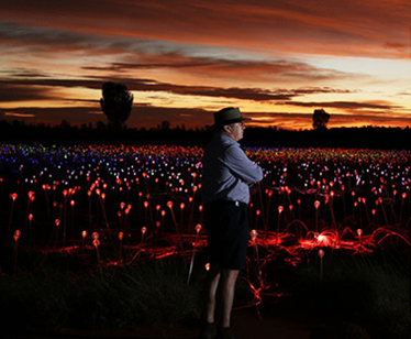 The Field of Light has now blossomed | Longitude 131°, Australia