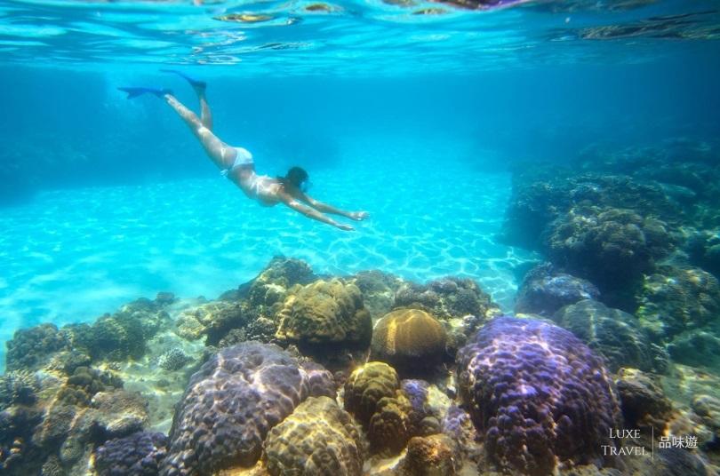 潜水圣地「木岛」
